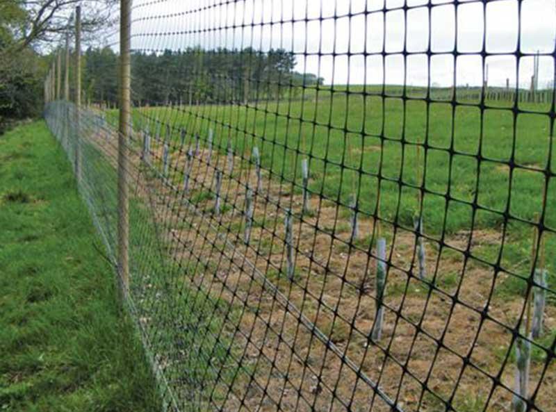 Poly Deer Fence