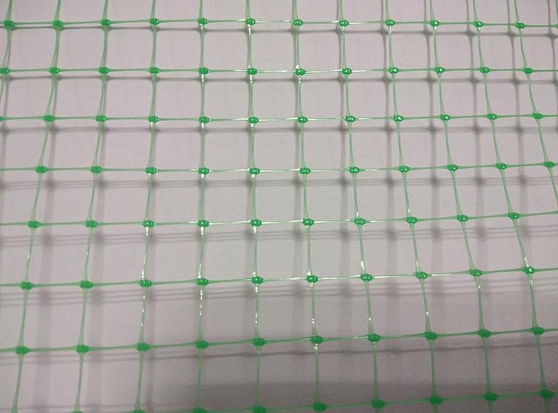 Bi-Oriented Net